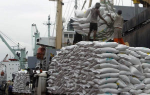 Workers unload 42,494 tonnes of Thai rice at the Tanjung Priok harbour in Jakarta