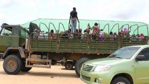 rescued captives bama axis
